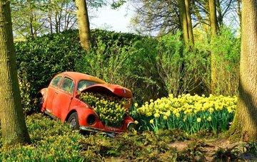 Poznávací zájezd do jarního Nizozemska za 1 799 Kč!