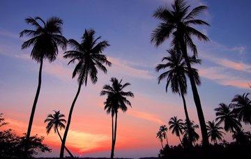 Srí Lanka z Vídně v únoru na 9 dní/ 8 nocí se snídaní za 19 380 Kč!