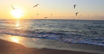 Bulharsko: Slunečné pobřeží z Vídně v září na 10 dní/ 9 nocí s polopenzí za 9 269 Kč!