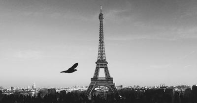 Francie: Paříž z Prahy v listopadu za 658 Kč/zpáteční letenka!