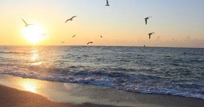 Bulharsko: Slunečné pobřeží z Vídně v září na 8 dní/ 7 nocí se snídaní za 3 838 Kč!