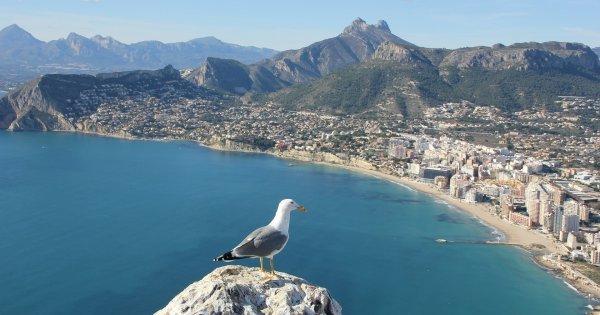 Z Pardubic do Alicante od 1 320 Kč/zpáteční letenka!