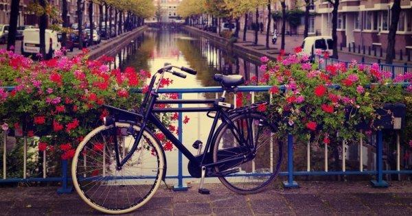 Amsterdam v listopadu za 1.540 Kč