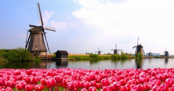 Holandsko - poznávací zájezd na 4 dny! Sleva 40 %!