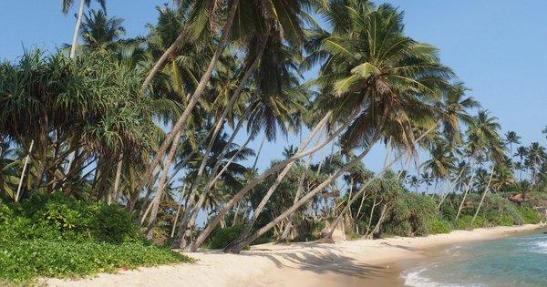 Srí Lanka: Negombo z Prahy v březnu na 10 dní/ 7 nocí s polopenzí za 18 423 Kč!
