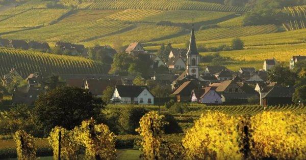 Za vínem do Alsaska a Štrasburku! Odjezd již 10. 10. 2019!