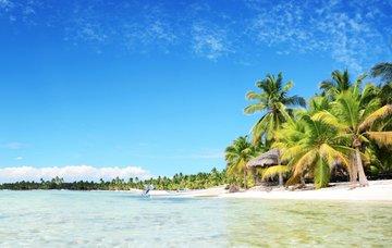 Ohřejte se v teplých krajinách aneb kam vzimě za mořem?