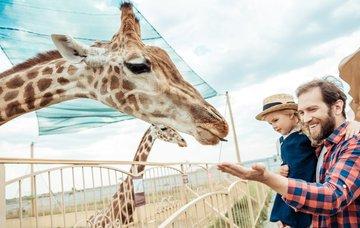 Kam na výlet za zvířaty? 7 tipů na nejlepší zoo světa