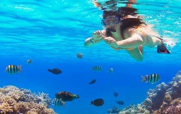 Egypt – podmořský ráj potápěčů a šnorchlistů. Kam se vydat?