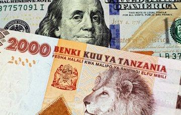 Jaká měna je v Tanzánii a kolik co stojí?