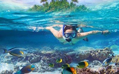 Kam se vydat do mořských hlubin za rejnoky i vraky dávných korábů?