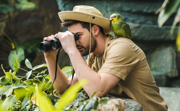 """Pravé safari nenajdete pouze v Africe. Kde všude můžete pozorovat zvěř v """"divoké"""" přírodě?"""