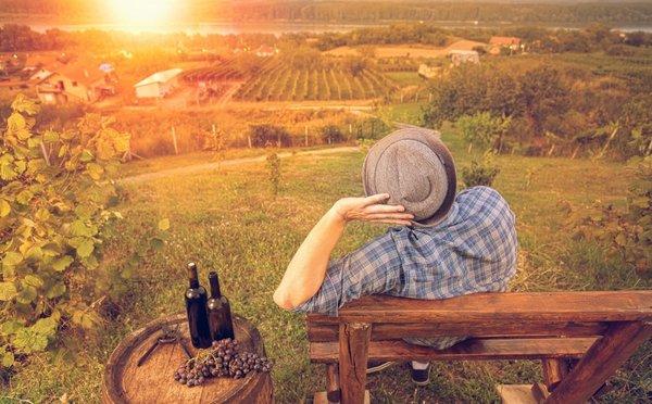Zájezdy za vínem aneb rady pro milovníky tohoto moku