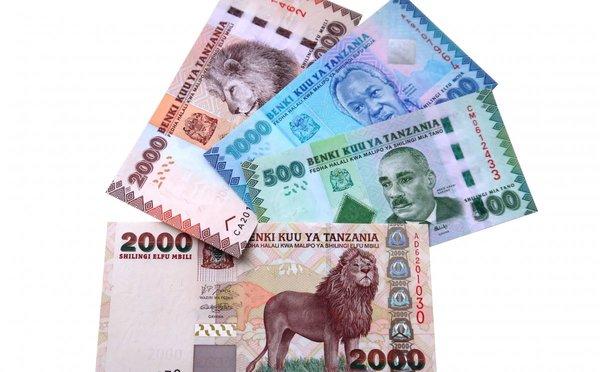 Jak platit na Zanzibaru - měna, směna a ceny