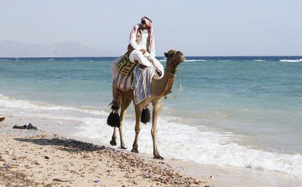 Tipy na aktivity ve Spojených arabských emirátech – nekonečně dlouhé pláže i rozžhavená poušť