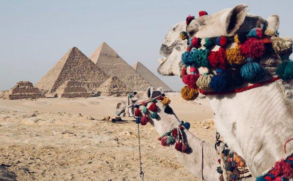 Tipy na aktivity v Egyptě – potápění, šnorchlování i starověké pyramidy