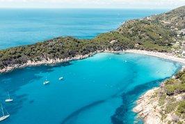 Elba (ostrov)