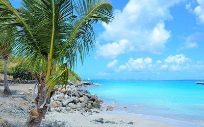 Průvodce Martinik