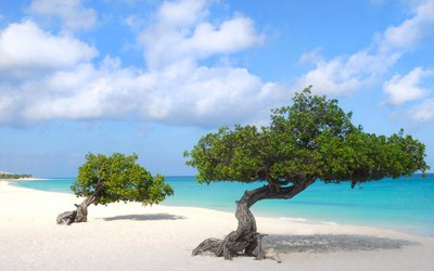 Průvodce Aruba